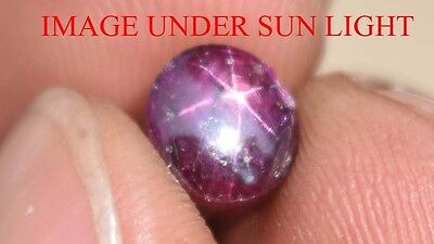 3.55 Cts NATURAL STAR RUBY/SAPPHIRE BEAUTIFUL UNHEATED UNTREATED {VIDEO} F2786