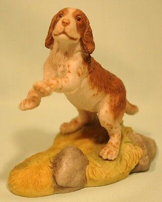 Teviotdale Spaniel dog by Tom Mackie dated 1981 in good condition