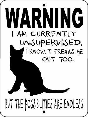 "CAT SIGN, Cat Decal,Cat Security Sign,Cats,Dogs,Pets,9""x12"" ALUMINUM SIGN,wuscat"