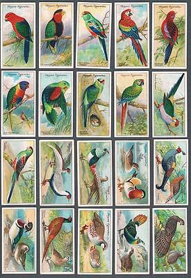 1909 John Player & Sons Nature Series Tobacco Cards Complete Set of 50