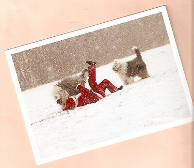 Old English Sheepdog and Santa Snow Christmas Cards Box of 10