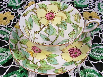 Tuscan Yellow Dogwood Chintz Floral Tea Cup And Saucer
