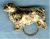 Clumber Spaniel Gold Plated Eyeglass Holder Pin Jewelry