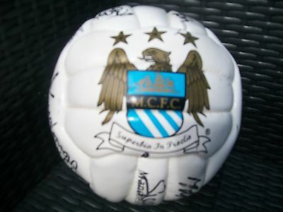 Rare Opportunity To Buy Very Rare Hand Signed Football 1990-1991