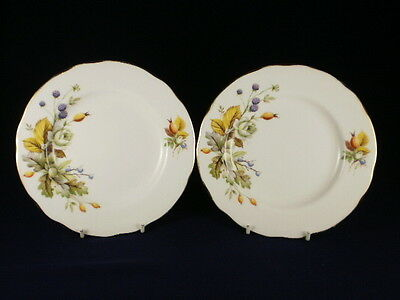 Duchess Autumn Side Plates Set Of 2