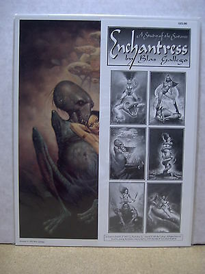 Blas Gallego: Enchantress Portfolio (USA)