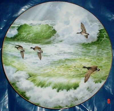 Royal Doulton Collectors Plate WATERSIDE - CANADIAN GEESE