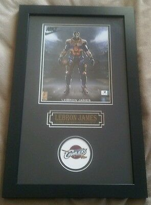 Authentic signed LEBRON JAMES superhero autographed NBA Champion & Finals MVP