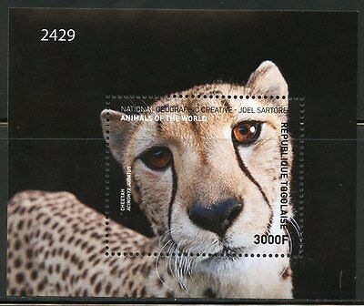 Togo  2016 National Geographic Animals Of The World Big Cats S/sheet Mint Nh