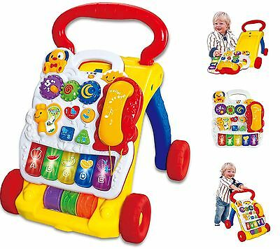 2 In 1 Childrens Baby Musical Sounds Activity Centre Push Along Walker SY81