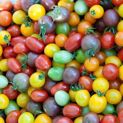 Tomato Cherry Mixed Colours 20 Seeds - Colourful and Flavourful Mixture