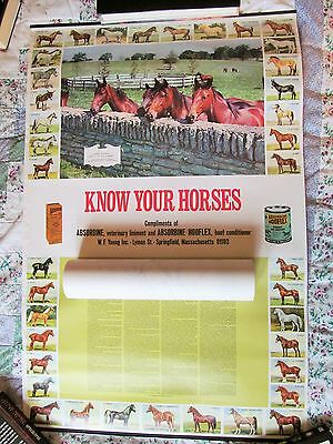 """VINTAGE HORSE BREEDS ABSORBINE KNOW YOUR HORSES POSTER 1980'S, 18"""" x 27"""" VG"""