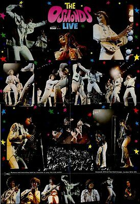 Osmonds The Official Fan Club Poster Live 1973