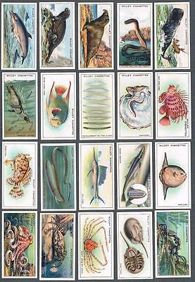 1928 Wills's Cigarettes Wonders of The Sea Tobacco Cards Complete Set of 50