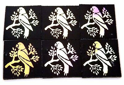 Parrot Set Of 6 Etched Dichroic Glass (Ed19) Cbs Coe 90 Fusing Supply