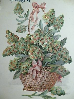 cpa gaufrée fleur reseda postcard antique embossed flower cartolina fiore carte