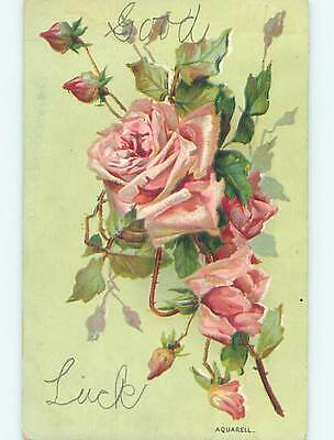 Divided-Back BEAUTIFUL DETAILED PINK ROSE FLOWERS o9071