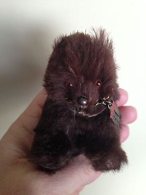 "Rare Old Vintage Antique Real Brown Fur German Berlin Bear Miniature 2.5"" No Res"