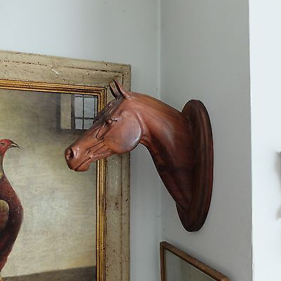 Vintage Wood Race Horse Head Carved Mahogany / Rosewood Sculpture