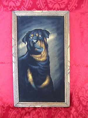 Vintage Mexico Painted Black Velvet Rottweiler Dog MCM Wall Wood Framed Picture