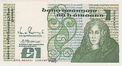 1989 Ireland P700D One Pound Banknote In Near Mint Condition