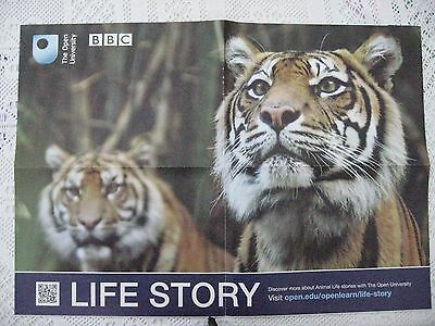 Open University Poster Double Sided Fold Out Poster (Tiger And Wildlife)