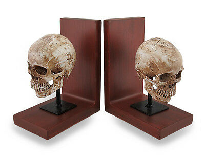 Mounted Aged Human Skulls Decorative Bookend Set of 2