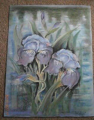 Original Signed Pastel Drawing:  IRIS by the LAKE ( 30 x40cm)