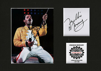 Freddie Mercury Queen mounted autographed pre pint 12 x 8 in limited edition