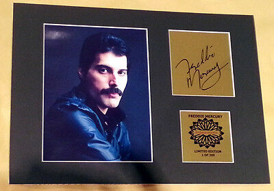 Freddie Mercury Queen mounted signed pre pint 12 x 8 in limited gold edition