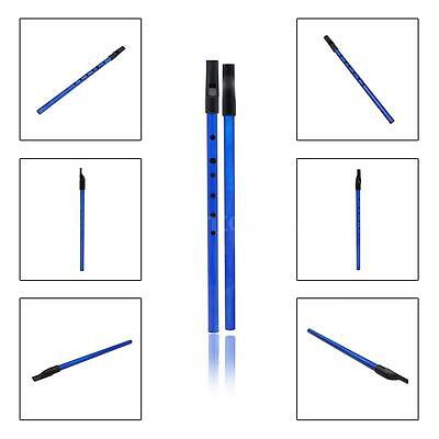 Deluxe Traditional Tin Penny Whistle 6 holes Music Brass Key of D Blue H7H3