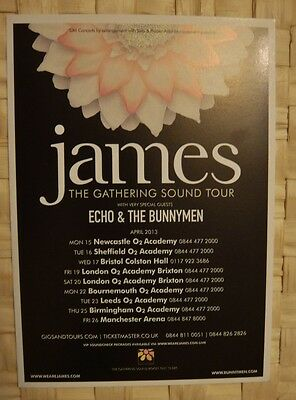 James Uk Tour Flyer 2013 With Echo & The Bunnymen
