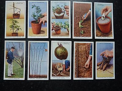 Wills - Garden Hints - Full Set Of 50 Cards In Excellent Condition