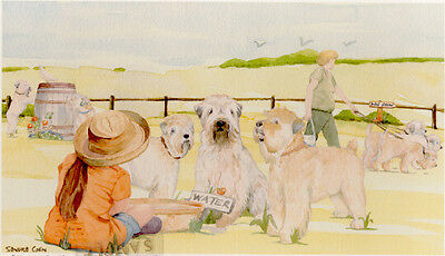 Soft Coated Wheaten Print Off To The Dog Show by UK Artist Sandra Coen LAST ONE!