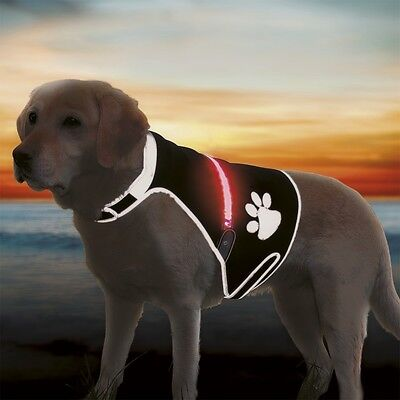 Trixie USB Flashing Safety Dog Light Up Vest 3 Sizes For Night Time Dog Walking