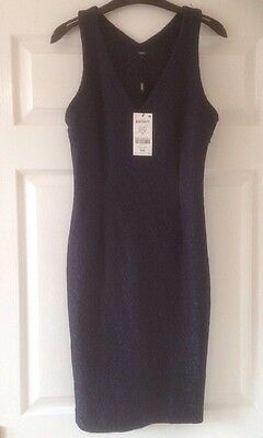 New Next Navy Lace Straight Dress Size  10   £45  bnwt   Evening / Party