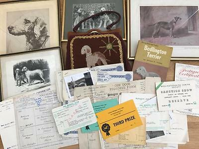Vintage Bedlington Terrier Collection Prints Bag Dog Show Cards Pedigree Forms