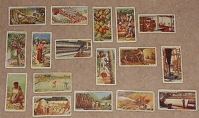 John Player Cigarette Cards 1928 Products Of The World Incomplete Set 17 Cards