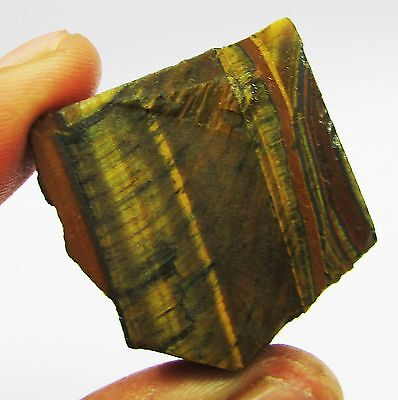 143.70 Ct Uncut South African Tiger's Eye Gemstone Rough Hurry