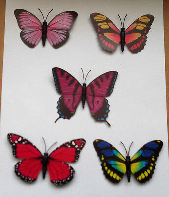 5 New - Butterfly Fridge Magnets - As Photograph