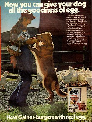 1974 Vintage ad for New Gaines-burgers/real egg/Golden retriever (040113)