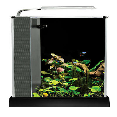 Fluval Spec 10 L (2.6 US gal) - Black Desktop Glass Aquarium