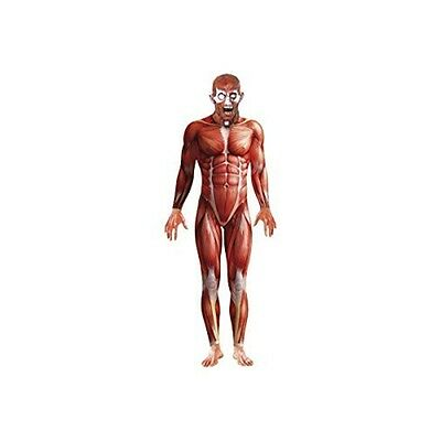 Small Mens Muscle Anatomy Costume - Fancy Dress Includes Body Suit & Mask