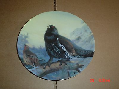 Bradford Exchange Collectors Plate CAPERCAILLIE IN THE WINTER TREES