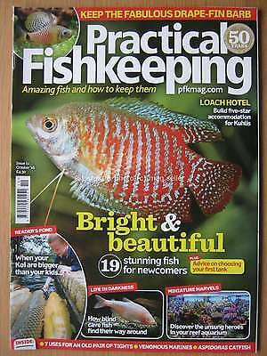 Practical Fishkeeping October 2016 Kuhlis Loach Koi Cave Fish Fish for Newcomers
