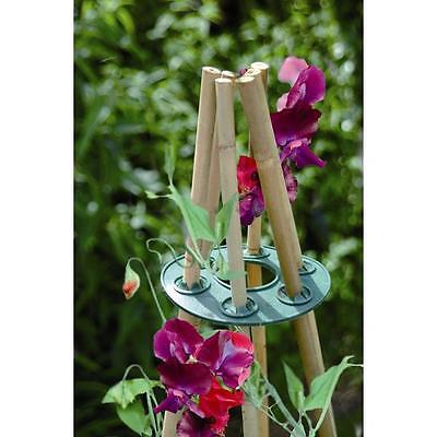 BOSMERE Garden Teepee Pole Frame Cap Climbing Plant Vegetables H205 QTY-2 MM-138