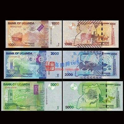 Uganda 3 PCS Set, 1000+2000+5000 Shillings, 2010-2015, P49 50 51, UNC