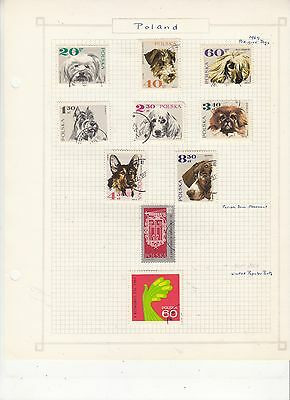 POLAND  1969 Stamps on old Album Page Removed for Shipping Dogs ETC..