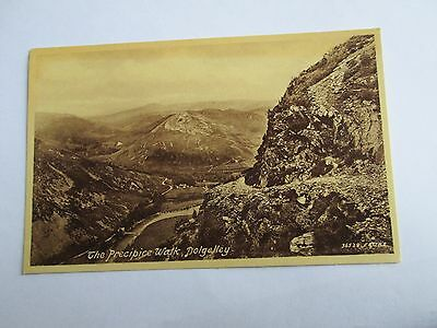 Postcard of The Precipice Walk, Dolgelley 86009 (Frith's unposted)