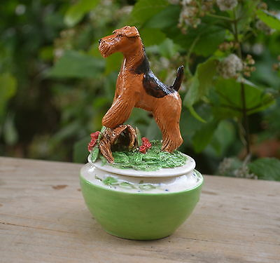Airedale terrier.  Handsculpted ceramic ring box ! LOOK